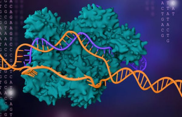 Revulucioni  CRISPR-Cas9